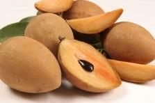 Sapote Fruit